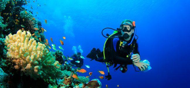 Faire de la plongée : les meilleures destinations