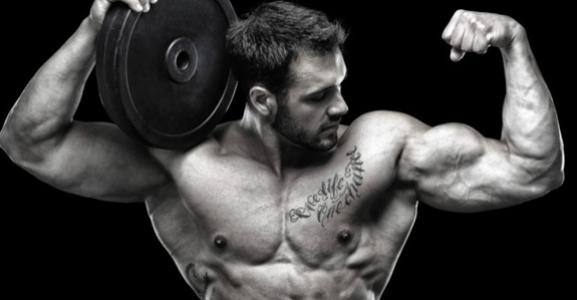 Le programme de musculation idéal